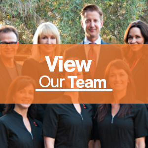 View Our Team